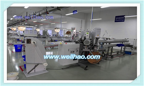 Surprising Shanghai Wireharness Factory Wiring 101 Capemaxxcnl